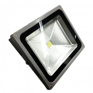 Floodlight-50W